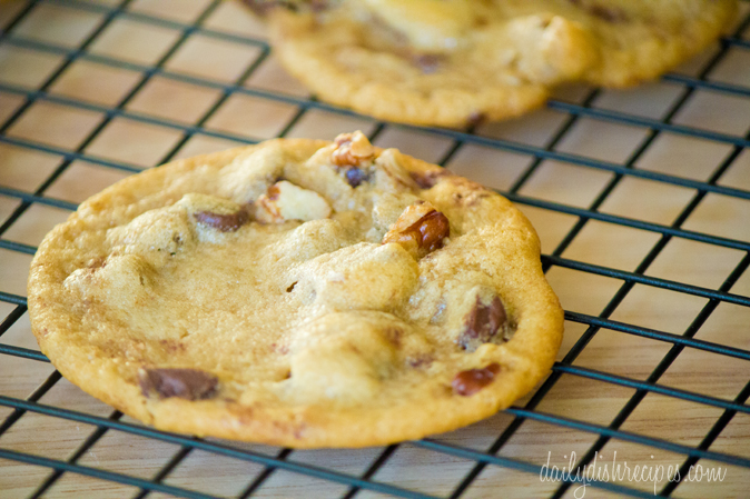 Chocolate Chip Spiced Walnut Cookies